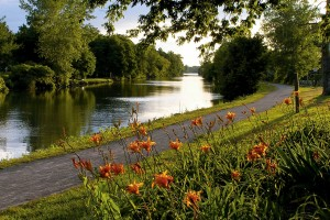 Simple Cremation - Rochester, NY - Rochester Cremation