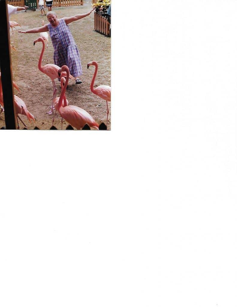 Sue with Flamingos (1)